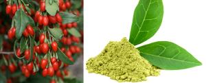 Goji Berry Advance and green tea