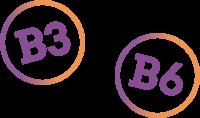 B3 and B6