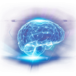 Cerebria Brain Supplement