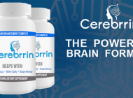 Cerebrrin: Brain Food